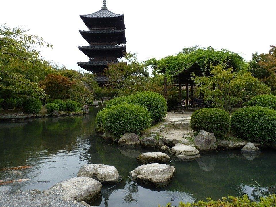 Bibliopólys - El jardín japonés, relajación, conexión y belleza natural