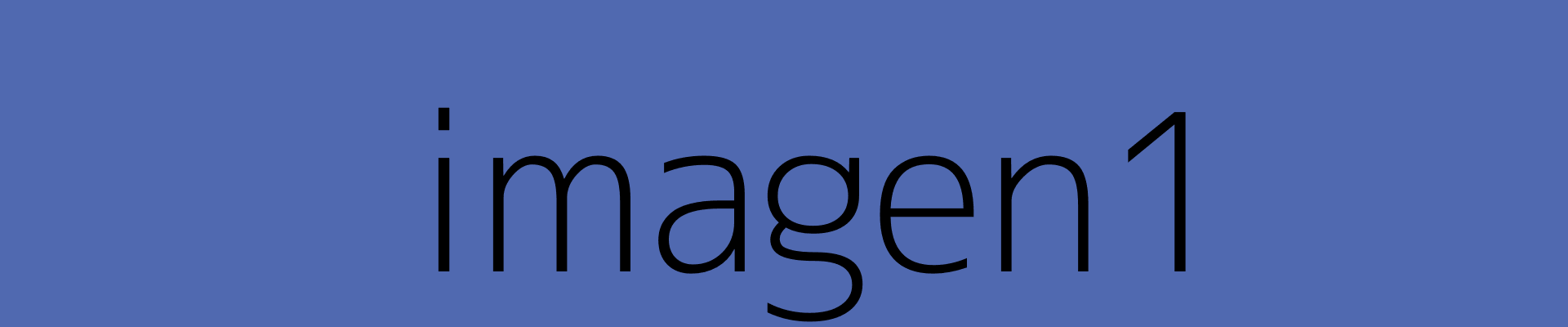 imagen1banner2